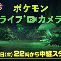Switch《精灵宝可梦:剑/盾》将于10月4日开启24小时无间断直播