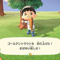 5月第4期Fami通日本周销 《动物森友会》继续霸榜