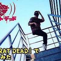 Switch《狂鼠之死》最新宣传视频公布