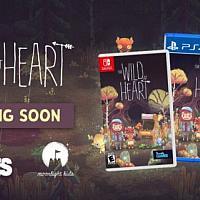 Switch版《狂野之心》将于年内发售